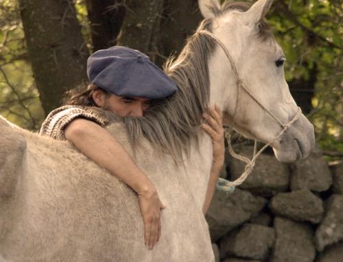 Argentinien, von wilden Pferden und sanfter Hand